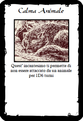 Calma Animale_fronte.png