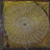 Spider-web (x5).png